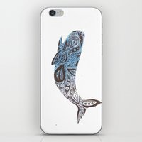 Whale  iPhone & iPod Skin