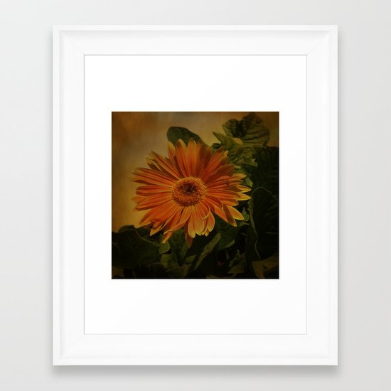 The Beauty Of Nature Framed Art Print