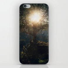 A Special Kind Of Night iPhone & iPod Skin