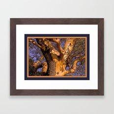 MADRONA TREE TORSO Framed Art Print