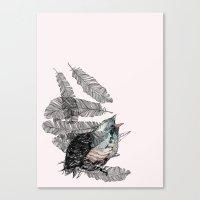 Birdster Canvas Print