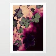 New Mystical Colors Art Print