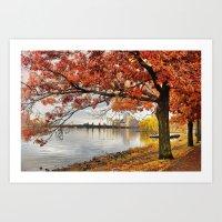 Fall in Boston, MA  Art Print