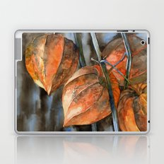 Phisalis Laptop & iPad Skin