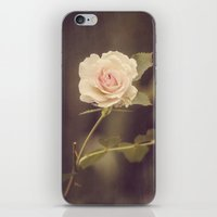 La Bella Rosa iPhone & iPod Skin