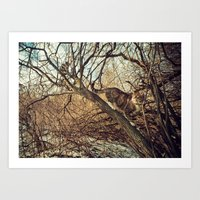 January Cats Art Print