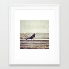 Bird Walk Framed Art Print
