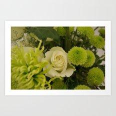 White and Green Arrangement Art Print