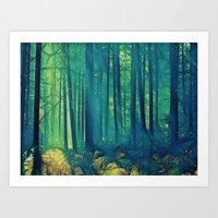 Eyes On The Forest, Not … Art Print