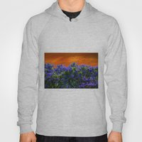 Purple Forest Hoody