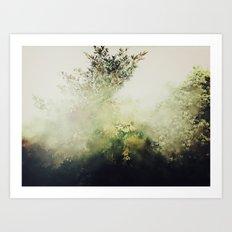 Glimpse Of Eden Art Print