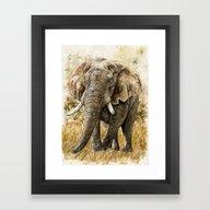 Africa08 Framed Art Print