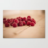 Summer Fruit Canvas Print
