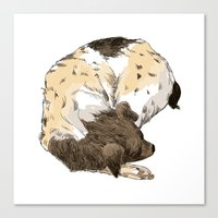 Sleeping Dog #002 Canvas Print