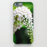 iPhone & iPod Case featuring Spring has Bloomed by Captive Images Photography