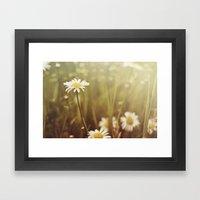 A Daisy Day Framed Art Print