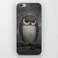 An Owl iPhone & iPod Skin
