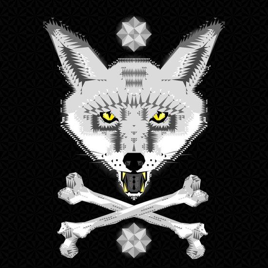 Silver Fox Geometric Art Print