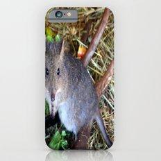 Potoroo iPhone 6s Slim Case