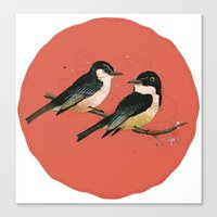 Pair of Phoebes Canvas Print