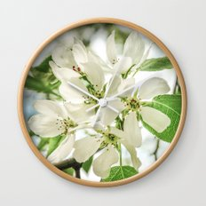 the Apple blossoms  Wall Clock