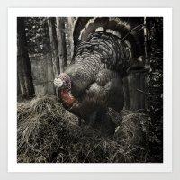 Tom Feiler Turkey Art Print