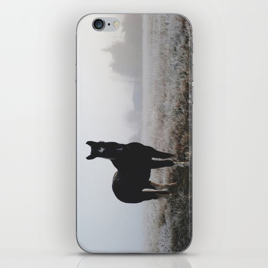 Frosty Klamath Horse iPhone & iPod Skin
