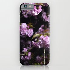 Goodnight Sakura  iPhone 6 Slim Case