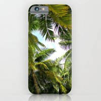 Maldivian Palm iPhone 6 Slim Case