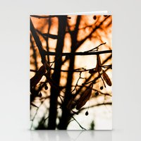 Late Autumn Chill Stationery Cards