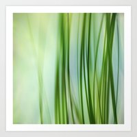 Vertical Grasses Art Print