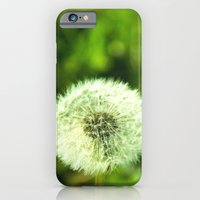 Blow Me iPhone 6 Slim Case