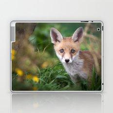 Fox Cub Laptop & iPad Skin