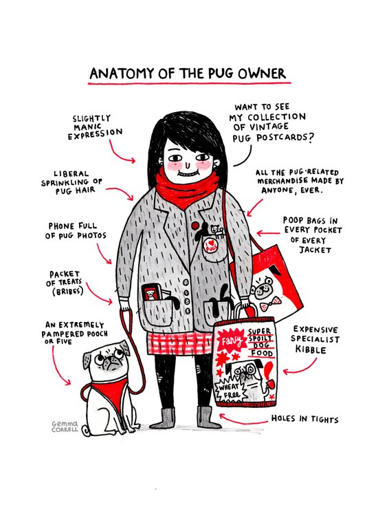 Anatomy of the Pug Owner Art Print
