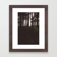Forest. Framed Art Print