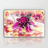 Elusive Laptop & iPad Skin