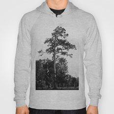 A Southern Pine Hoody