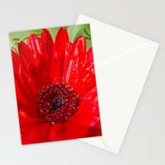 Red Gerber Daisy Stationery Cards