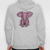 Pink Elephant and Roger Hoody