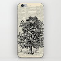 Vintage Oak Tree iPhone & iPod Skin