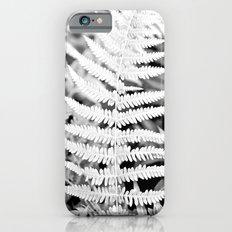 Walking In The Woods iPhone 6 Slim Case