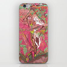 Dreaming In Color iPhone & iPod Skin
