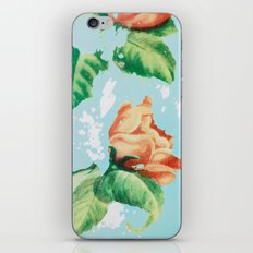 Vintage Metal Rose Laundry Bin iPhone & iPod Skin