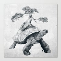 Tortoise Tree - Growth Canvas Print
