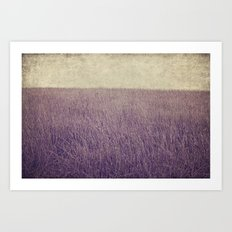 Purple field Art Print