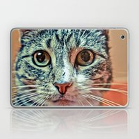 PRETTY KITTY Laptop & iPad Skin