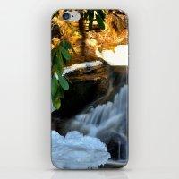 Winter's Rush iPhone & iPod Skin