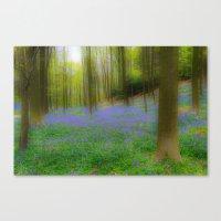 Bois De Halle Bluebells Canvas Print