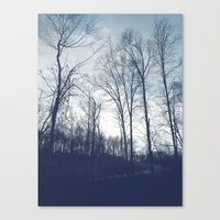 Blue Vanilla Canvas Print