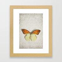 Hebomoia Glaucippe Lepidoptera Framed Art Print